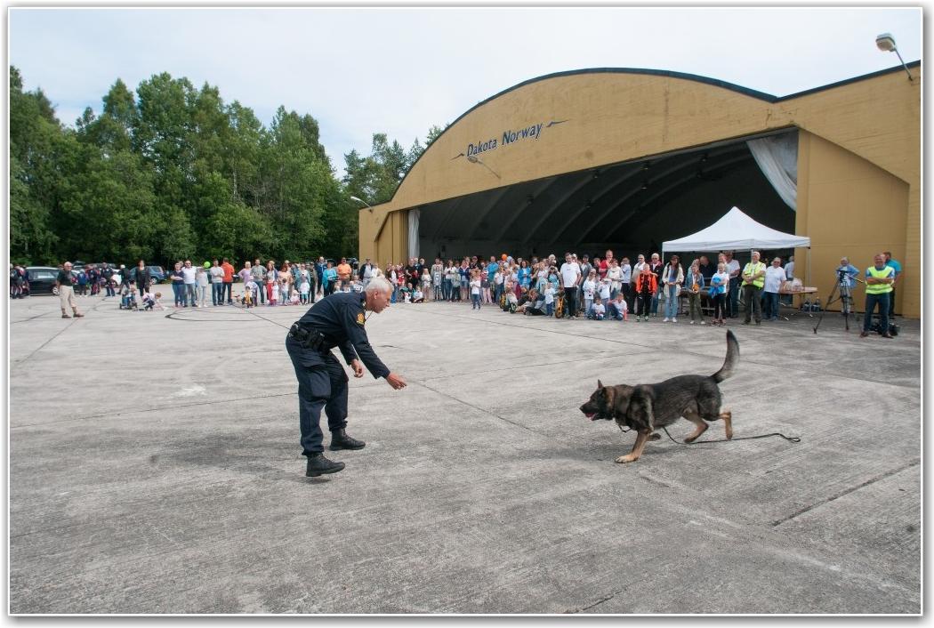 PLANTET NARKO: Politiet stilte med narkohund og hundefører. Polititjenestemannen hadde på forhånd plassert ut litt stoff i Odd Johansens turbuss, men det snuste «Mikki» opp. FOTO: Martin Nilsen